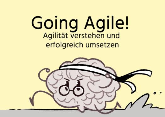 Videokurs: Going Agile! Agilität verstehen und umsetzen