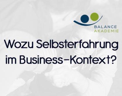Wozu Selbsterfahrung im Business-Kontext
